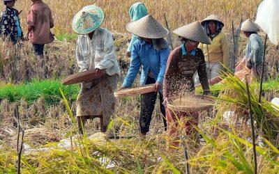 6 Cara Menjalin Keberagaman Antara Masyarakat Indonesia